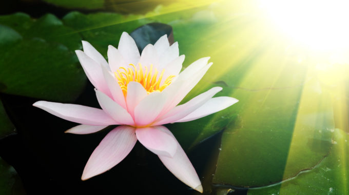 9 Techniques To Help Raise Your Levels Of Spiritual Awareness